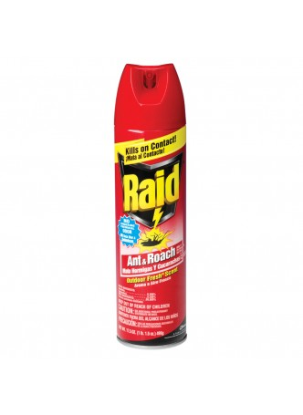 Raid Ant And Roach Killer, 17.5 Oz.