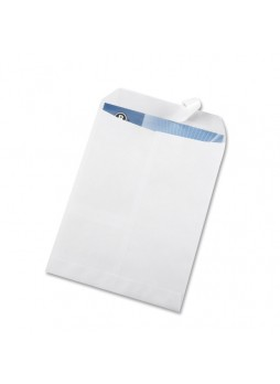Business Source Removable Strip Catalog Envelopes, #10, Peel & Seal, White, Box of 100